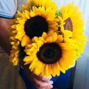 buchet-floarea-soarelui