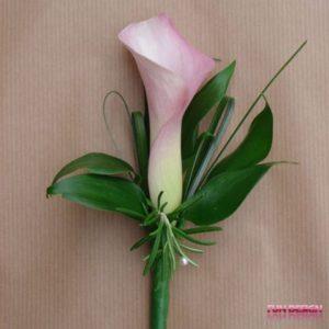 Cala roz