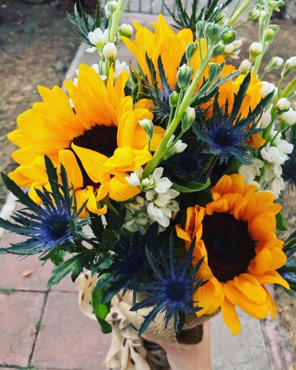 5 eryngium albastru, 3 floarea soarelui și 5 mathiola